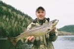 043-saumon du nord